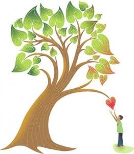 کاشت نهال امید،کاشت نهال امید 2،کاشت نهال امید 3،کاشت نهال امید 4،کاشت نهال امید 5 موسسه خیریه بهنام دهش پور